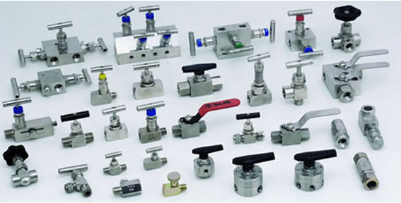 SS Instrumentation Manifold Valves and Fittings