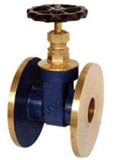 Bronze Gate Valve—Screwed and Flanged Ends