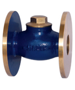 Bronze Non Return Valve—Screwed and Flanged Ends